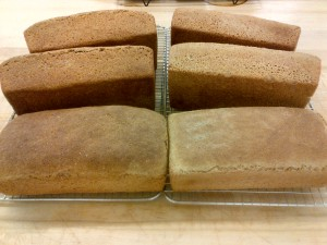 100% whole wheat (left) and spelt (right) Photo by Kimberley (c)2013